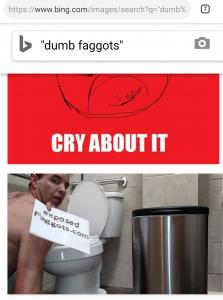 Dumb Faggots of Bing.com