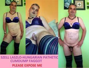Hungarian cocksucker,cumdump faggot-SZELL LASZLO