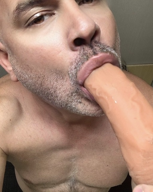 The Dildo Sucking Faggot