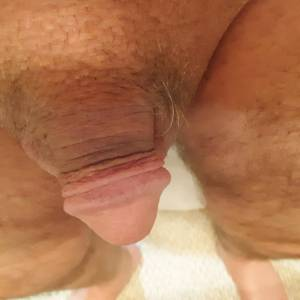 Looking to be exposed as a cocksucker that is willing to expose myself as requested. My phone number is available upon request