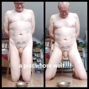 Stupid piss whore