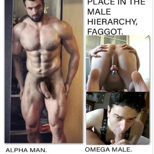Alpha and faggot hierarchy