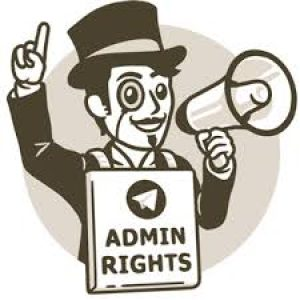 LLM now has Admin rights.